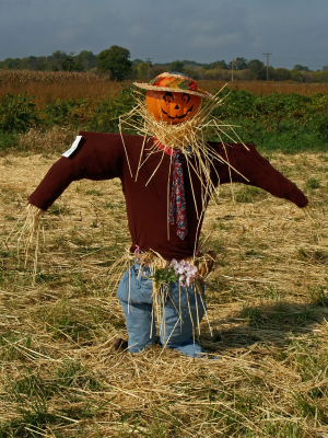 SUPER Stylised Challenge - October 2008 - Scarecrow