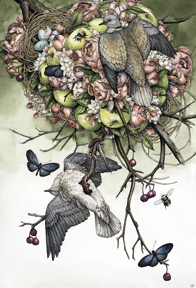 'Collared Doves' 2015, ballpoint pen, ink pencils, liquid ink, colored pencils, graphite and gel pen on multi-media paper, 15 ¾ x 22 ¾ inches